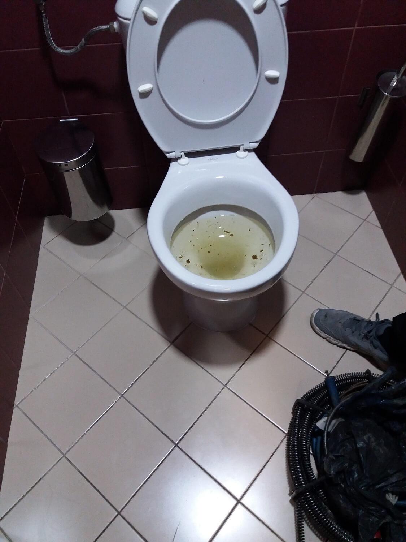 otpushvane-toaletna-sofia